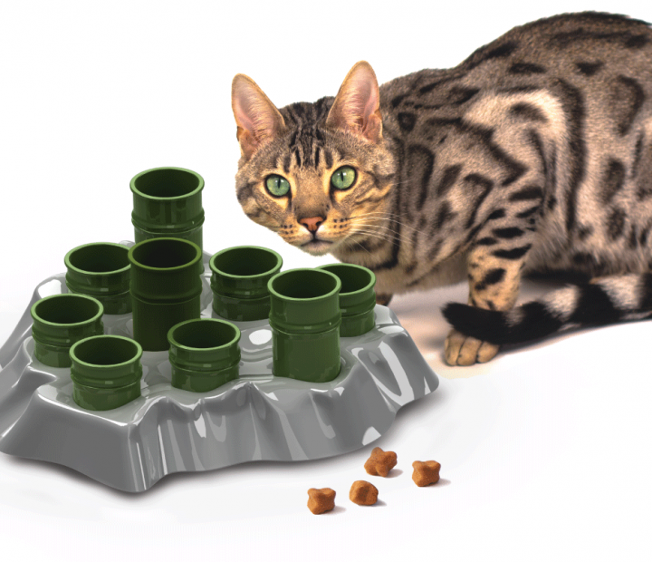 Diy Cat Slow Feeder: Cat Enrichment Toys