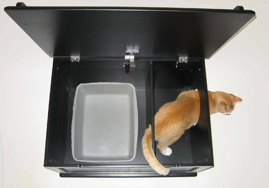 Top Ten Crappiest Litterbox Choices Gocatgosf